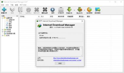 下载利器IDM 6.37.15绿色版